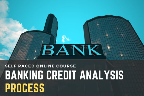 Banking Credit Analysis Process (for Bankers) cover