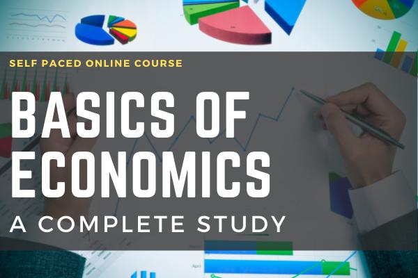 Basics of Economics A Complete Study cover