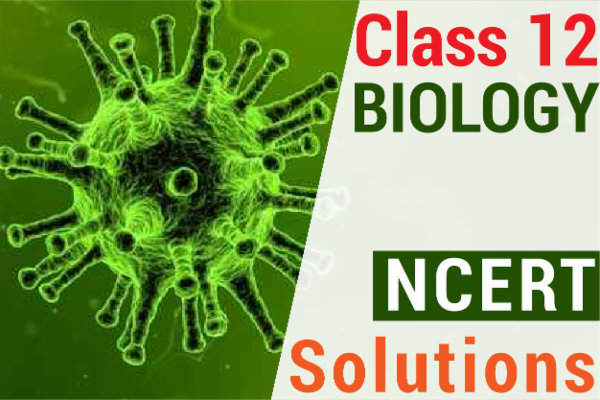 NCERT SOLUTIONS FOR CLASS 12 BIOLOGY cover