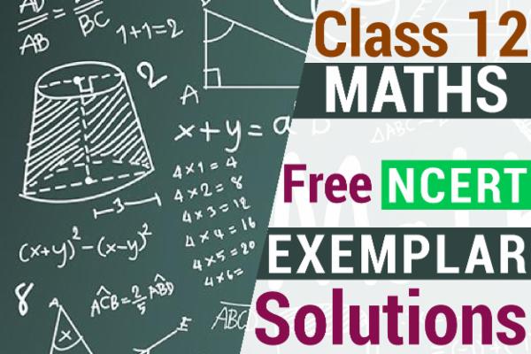 NCERT MATHS EXEMPLAR SOLUTIONS CLASS 12 cover