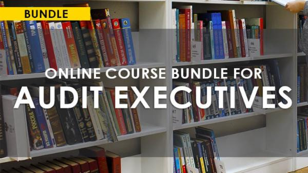 ONLINE COURSES BUNDLE FOR AUDIT EXECUTIVES cover