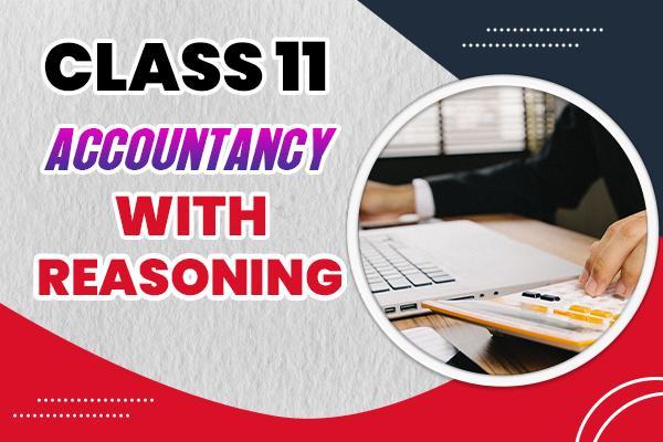 Accountancy : Class 11 cover