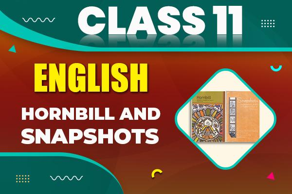 English : Class 11 cover