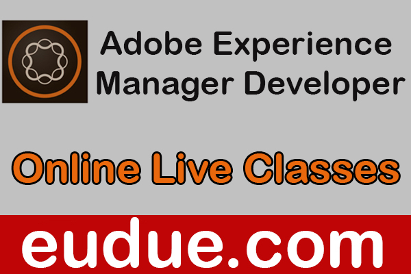 Adobe Experience Manager Developer Online Live Classes cover
