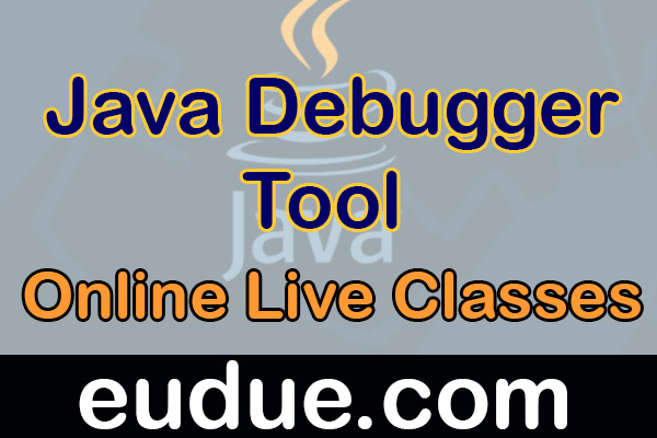 Java Debugger Tool Developer Online Live Classes cover