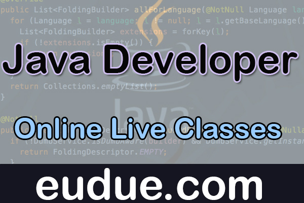 Java Developer Online Live Classes cover