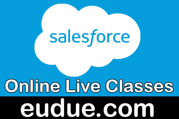 SalesForce Online Live Classes cover
