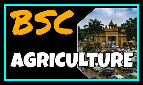 BSC AGRICULTURE cover