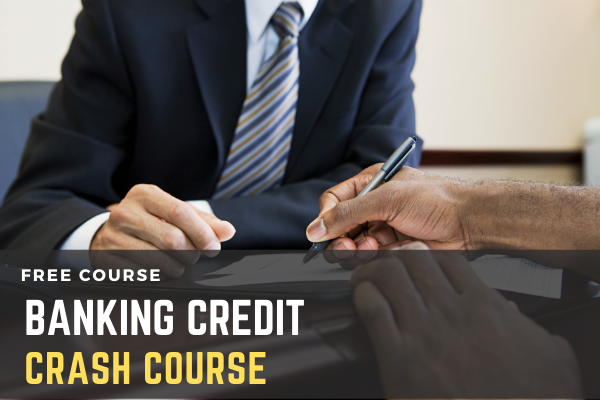 Free Crash Course on Banking Credit cover