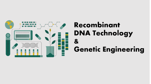 Recombinant DNA Technology & Genetic Engineering cover