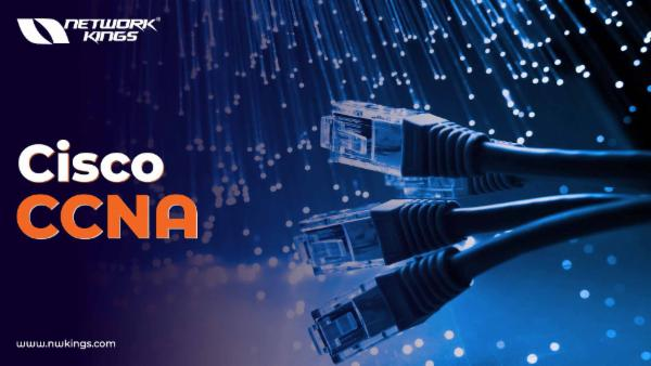 CCNA in Hindi + Lab cover