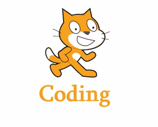Pro Coding cover