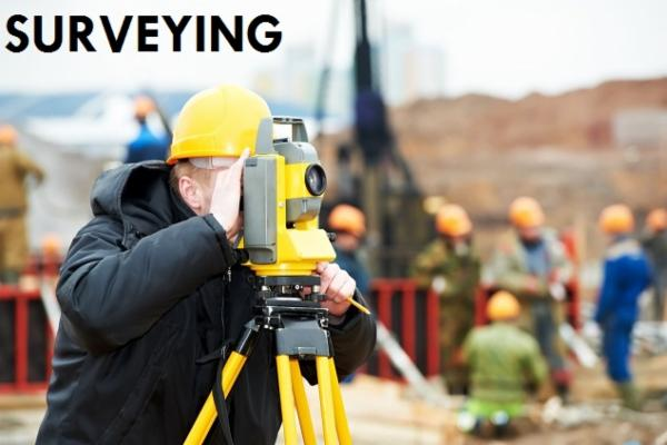 SURVEYING cover