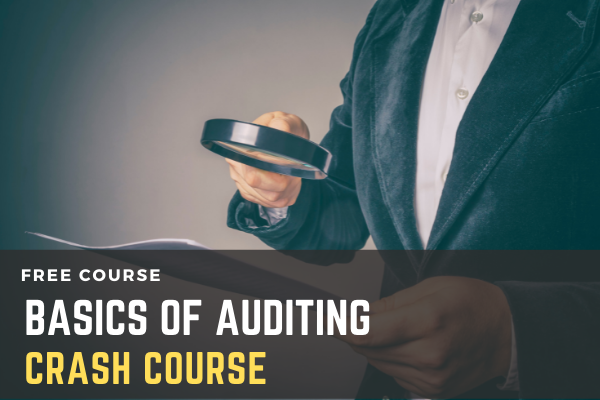 Free Crash Course on Basics Of Auditing cover