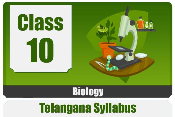 CLASS 10 BIOLOGY - TS cover