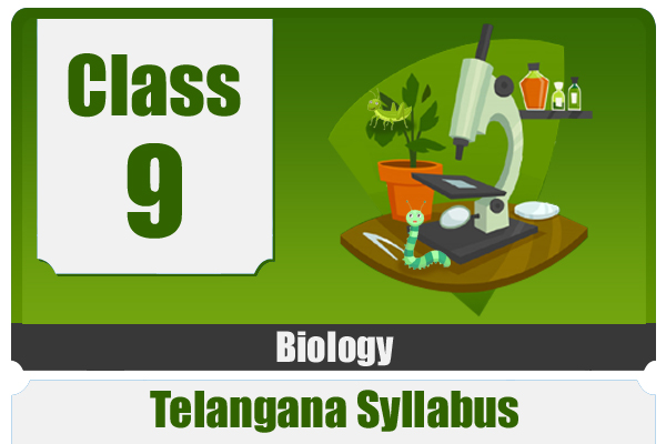 CLASS 9 BIOLOGY - TS cover