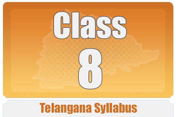 CLASS 8 TELANAGANA SYLLABUS cover