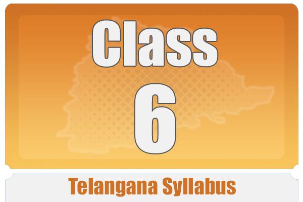 CLASS 6 TELANAGANA SYLLABUS cover