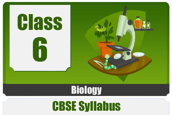 CLASS 6 BIOLOGY- CBSE cover