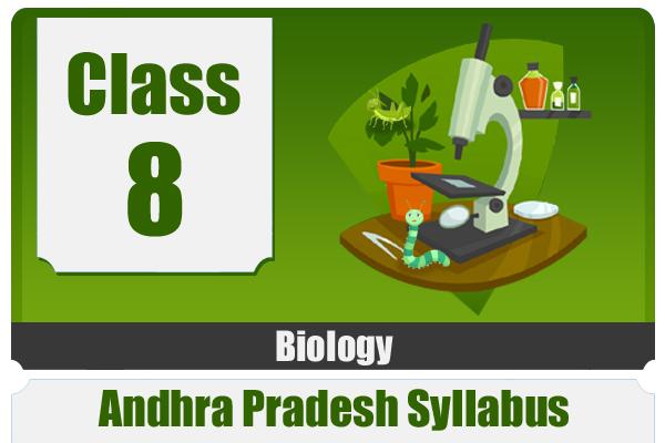 CLASS 8 BIOLOGY - AP cover