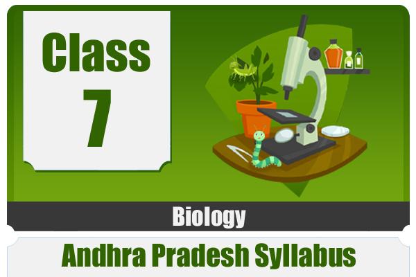 CLASS 7 BIOLOGY - AP cover