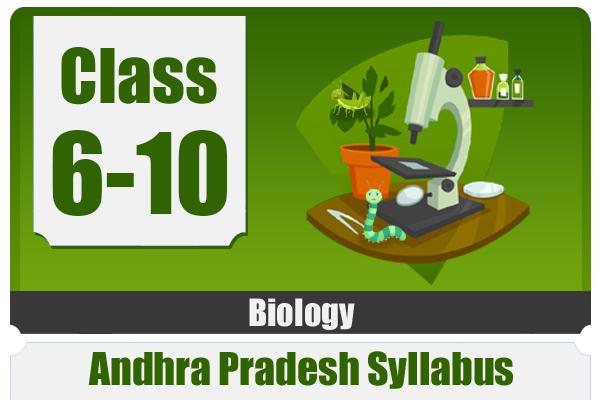 BIOLOGY - Andhra Pradesh cover