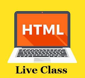 LIVE 1:1 CLASS - HTML & CSS cover
