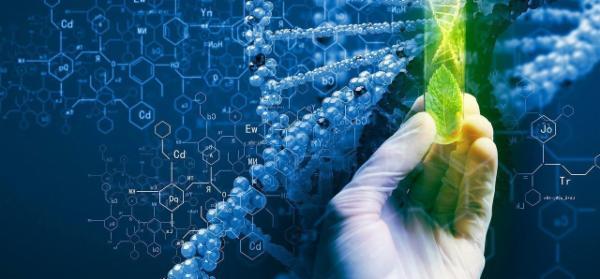 Teacher Training Program- Biotechnology cover