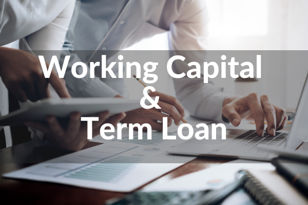 Working Capital & Term Loan from Banker's Point of View cover