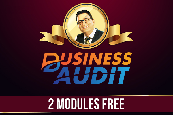 Business Audit - 2 Modules Free cover