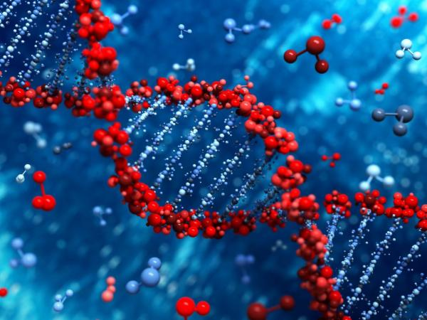Genetic Engineering Using CRISPR Technology cover