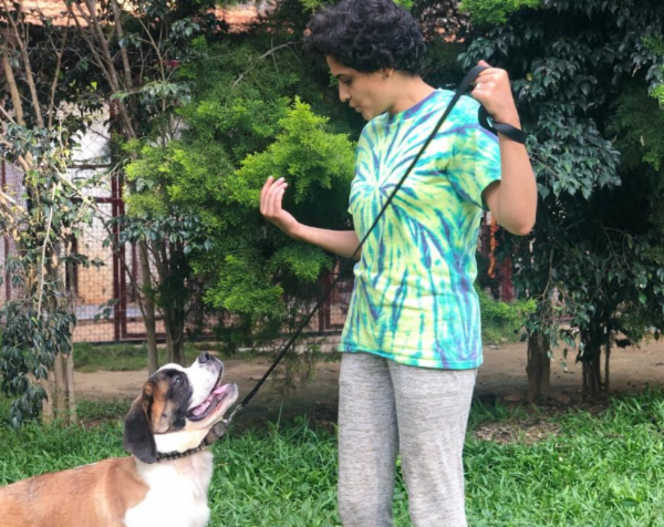 Teach your dog the 'Focus' command cover