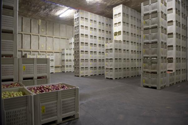 Cold Storage Technician cover