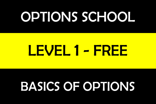 Basics of Options Trading - Level 1 cover
