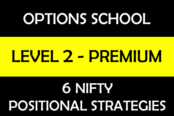 Nifty Options Positional Strategies - Level 2 cover