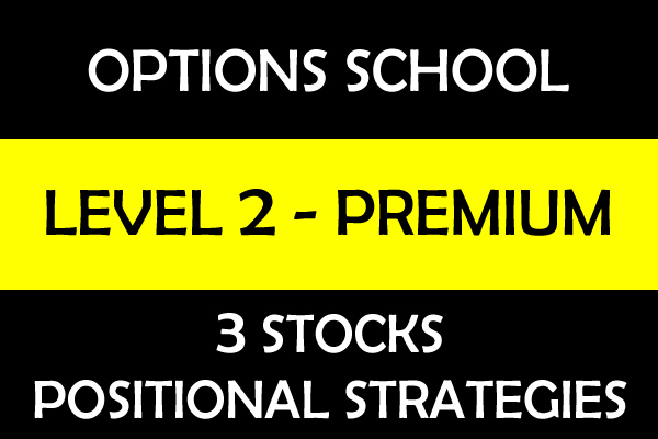 Stock Options Positional Strategies - Level 2 cover