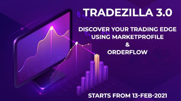 TRADEZILLA 3.0 cover