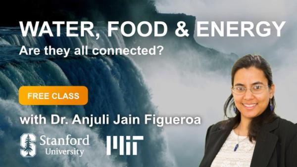 Water, Food & Energy cover