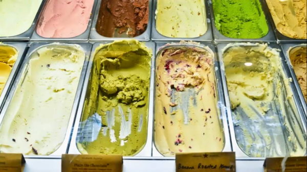 Ice Cream Processing Technician PH, PG, TG and FG cover