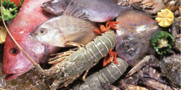 Fish and Sea Food Processing Technician PH, PG, TG and FG cover