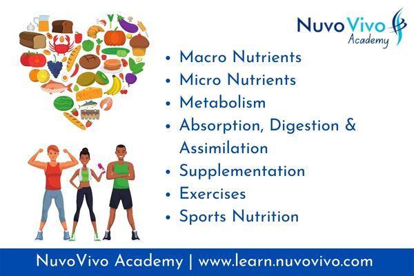 NuvoVivo Level - 1 (Foundation) cover