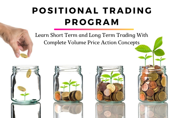 Positional Trading Program with Complete Volume Price Action Concepts cover