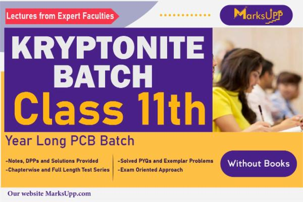 Kryptonite Class 11 Yearlong PCB Batch Without Books cover