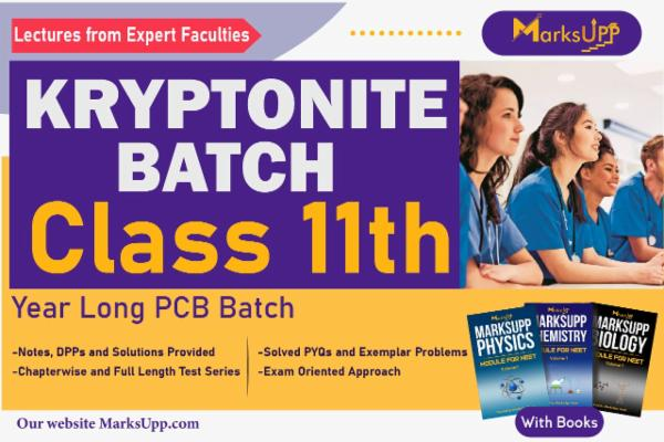 Kryptonite Class 11 Yearlong PCB Batch With Books cover