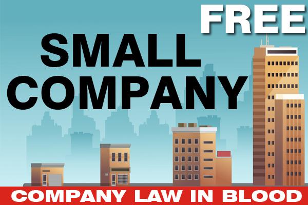 Small Company cover
