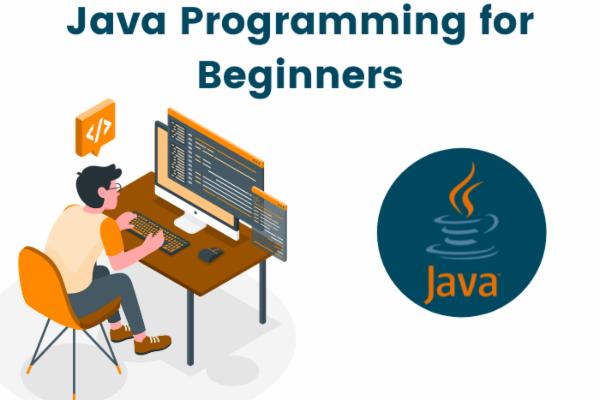 Java Programming for Beginners cover