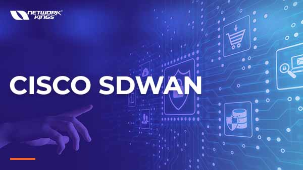 Live SDWAN + 30 Hours LAB Access | 300-415 ENSDWI cover