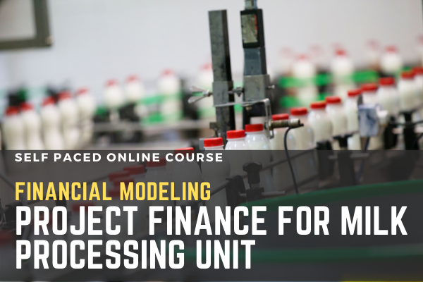 Financial Modeling: Project Finance for Milk Processing Unit cover