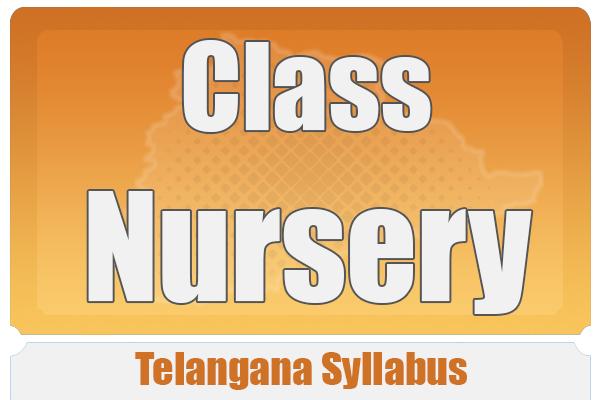 CLASS NURSERY TELANGANA SYLLABUS cover