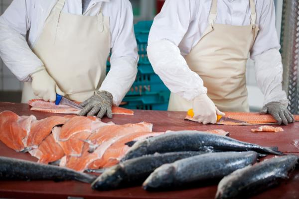 Assessment for Fish and Sea Food Processing cover